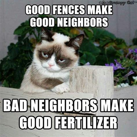 Grumpy Cat Meme Good - good fences make good neighbors bad neighbors make good