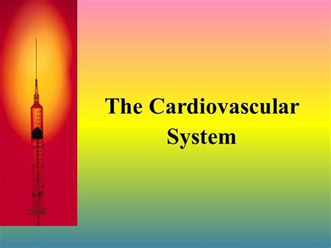 Cardiovascular System Authorstream Powerpoint On Cardiovascular System