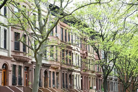 ny housing new york apartment guide rent control vs rent stabilization curbed ny