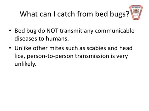 can bed bugs jump from person to person rems bed bugs