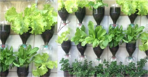 how to make plastic bottle vertical gardens how to