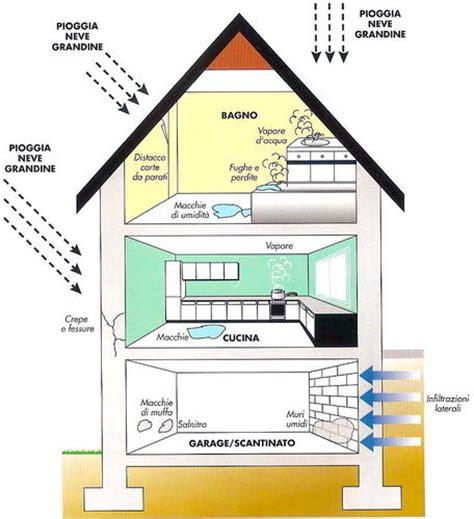 come togliere la muffa dal soffitto architetto di leo leonardo il problema umidita cause e