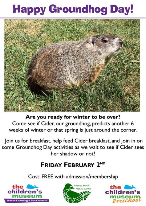 groundhog day live groundhog day live