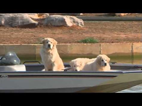 g3 boats youtube fredricks marine g3 boats who let the dogs out youtube
