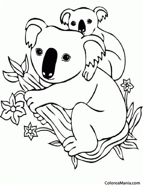 dibujos para colorear koala colorear koala con su cra animales del bosque dibujo