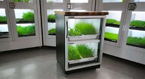 hassle  hydroponic systems urban cultivator