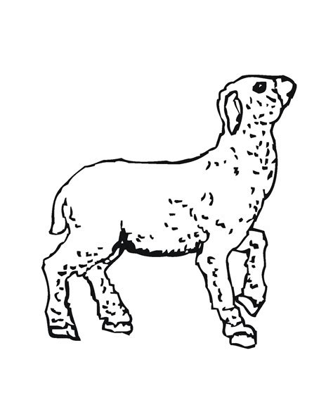 free lamb of god coloring pages