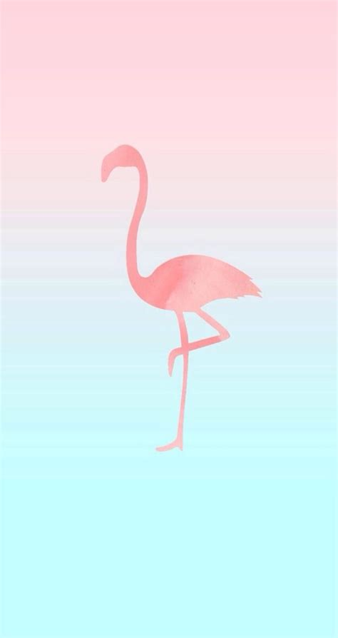 flamingo wallpaper for iphone 6 25 wallpapers para personalizar seu celular wallpaper