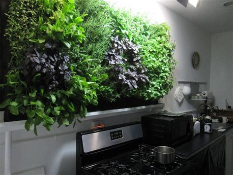 wall herb garden indoor 17 best ideas about herb wall on kitchen herbs wall gardens and indoor vertical gardens