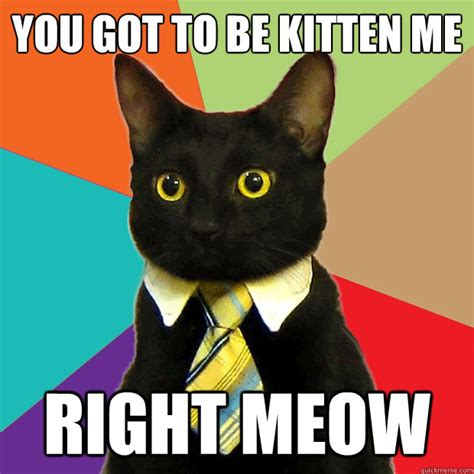Cat Meow Meme - you got to be kitten me right meow business cat quickmeme