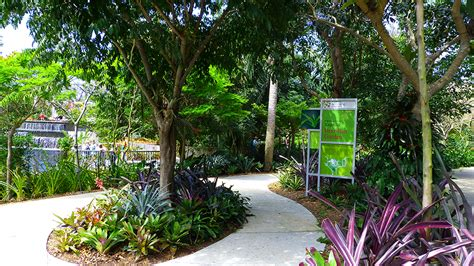botanical garden naples naples botanical gardens michael c