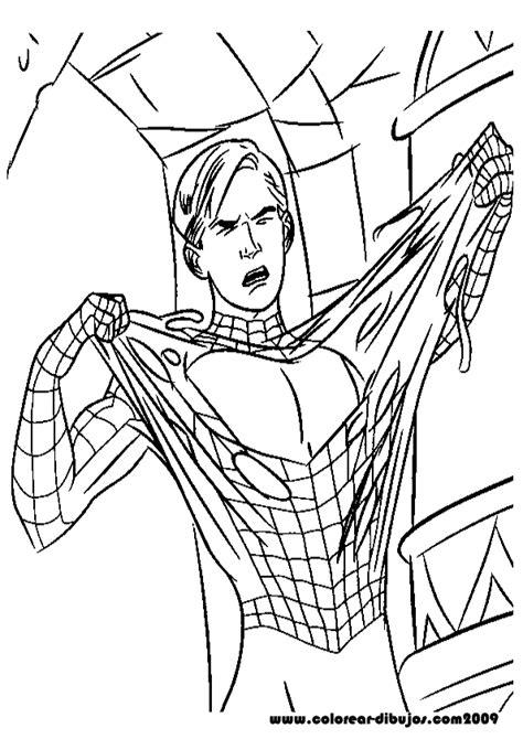 imagenes para pintar del hombre araña pin dibujos del hombre araa para colorear arana on pinterest