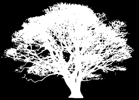 white silhouette white tree silhouette on black clip art at clker com