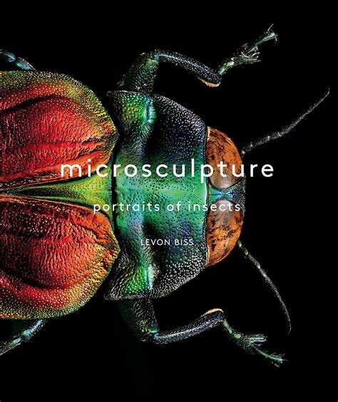 download microsculpture portraits of insects epub - 1419726951 Microsculpture Portrait Of Insects