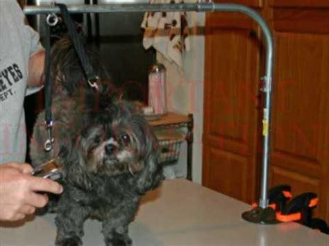 diy grooming table build a grooming arm