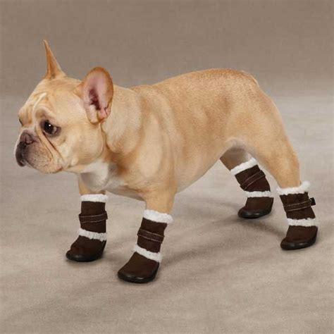 dogs in boots classic sherpa boots chocolate baxterboo