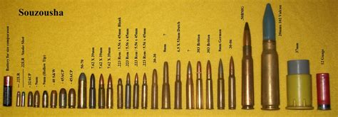 ammo purchased by federal government various ammunition