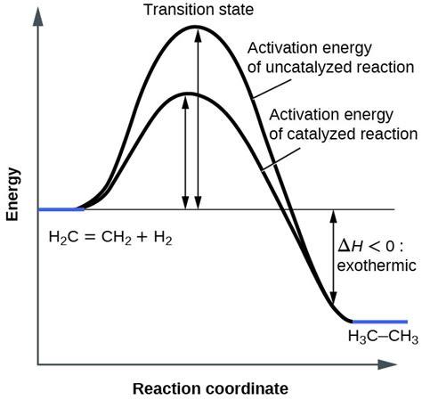 energy reaction coordinate diagram catalysis chemistry