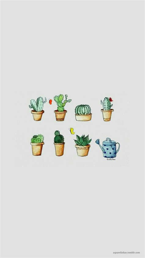 wallpaper iphone cactus fondo de pantalla backgrounds pinterest cactus