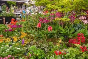 Flower Garden Show New Show Gardens At Rhs Chelsea Flower Show 2015 Rhs Gardening