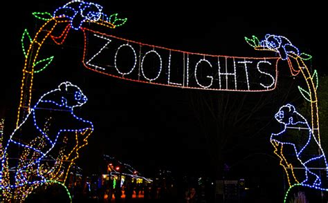 ace hardware zoo lights zoolights small friendly planet