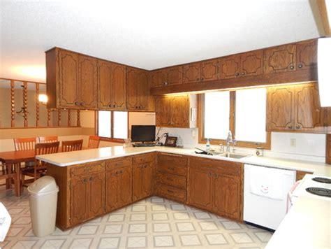 Need ideas for 1970's oak kitchen cabinet update