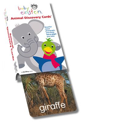 Discovery Gift Card - for baby kids archives the butterfly gift shop