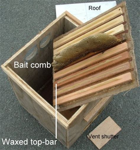 top bar bait hive warr type bait hive