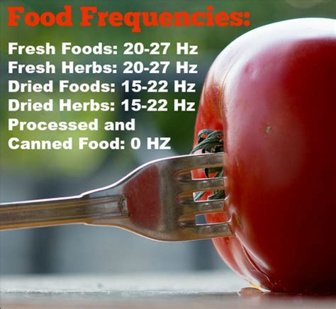 frequence cuisine the fruit part 8