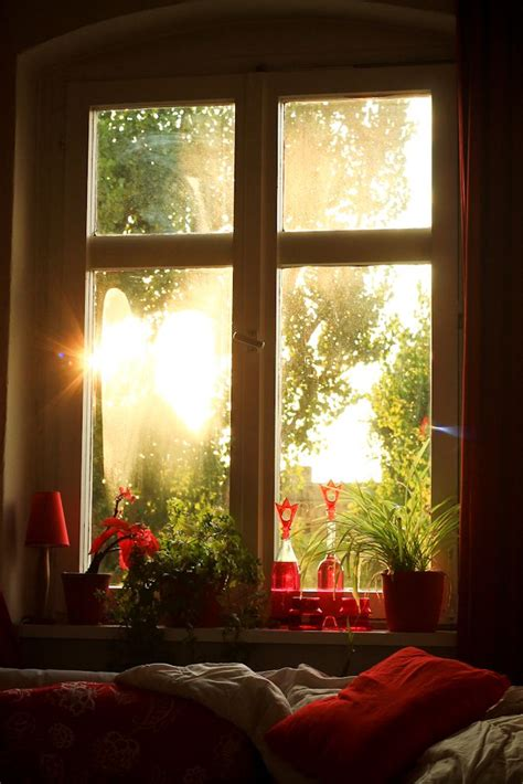 beautiful window what a glorious morning random pics pinterest