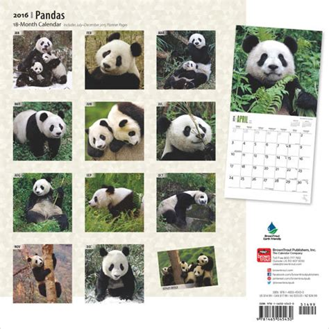 pandas 2018 calendar books pandas calendars 2018 on europosters