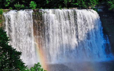 cascadas con 225 rboles imagui descargar gratis cascada rocas los rboles paisaje