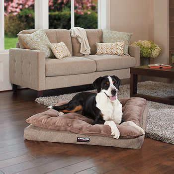 costco pet bed dog beds costco