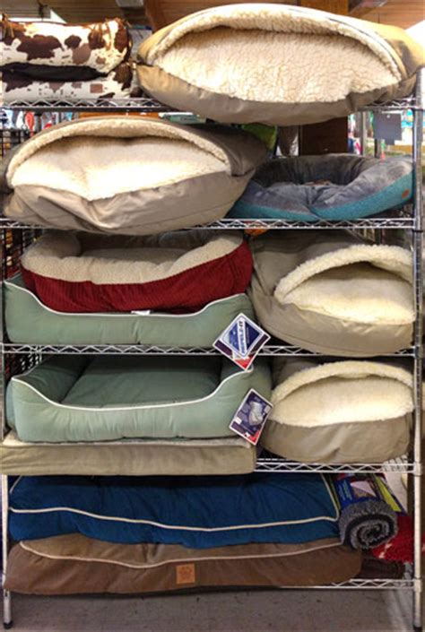 Feeders Supply Beds Pet Supplies Shoo Collars Sunset Feed Supply Miami