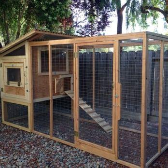 Backyard Chickens San Jose For The Birds Cc 16 Photos 10 Reviews Contractors