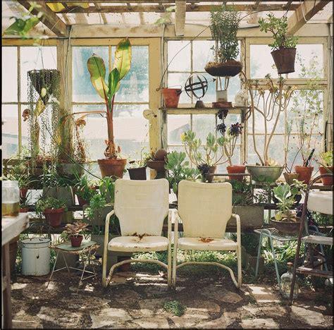 Pflanzen Winterfest Machen by Die Richtige Vorbereitung Pflanzen Winterfest Machen