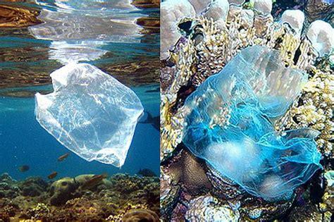 plastic bags effects plastic2011