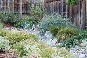 kelly marshall garden design specializing in beautiful california native low water garden