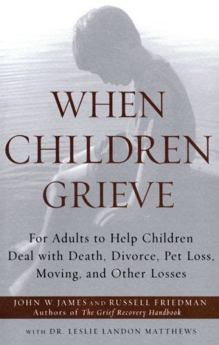 divorce and loss helping adults and children mourn when a marriage comes apart books 17 best images about grief loss on stories