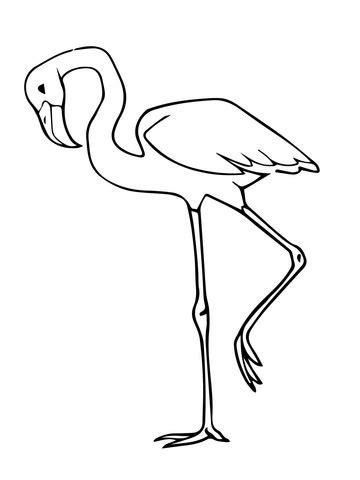 pink flamingo coloring page flamingo coloring page preschool coloring pages