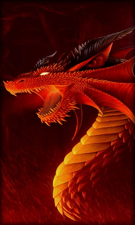 wallpaper android dragon dragon live wallpaper free apk android app android freeware