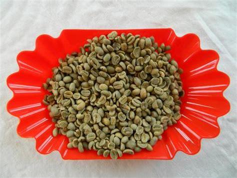 Green Coffee Kayumas organic coffee beans for roasting home roast coffee