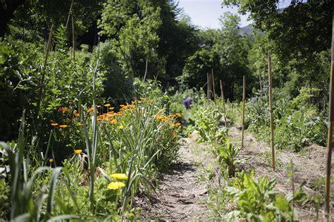 Préparer Jardin Pour L Hiver by Preparer Les Escargots Du Jardin Maison Design Apsip