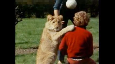 film about lion from harrods christian the lion snags up and coming scribe exclusive