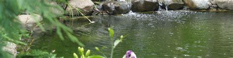 laghetti da giardino per pesci laghetti e fontane da giardino girotti il mondo all aperto