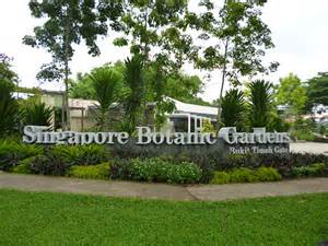 Botanical Garden In Singapore Botanic Garden And Bukit Timah Nature Reserve In Singapore The Best Tour In Asia