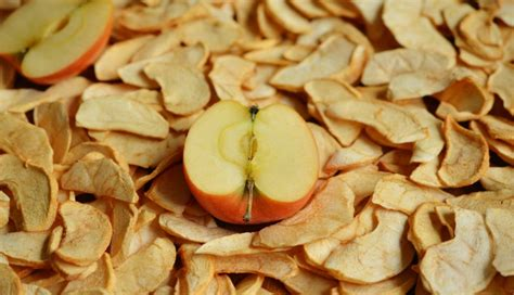 Manisan Kering Buah Apricot best ways to preserve apples 4 ways to get started