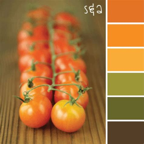 food color combinations best 25 brown color schemes ideas on pinterest brown