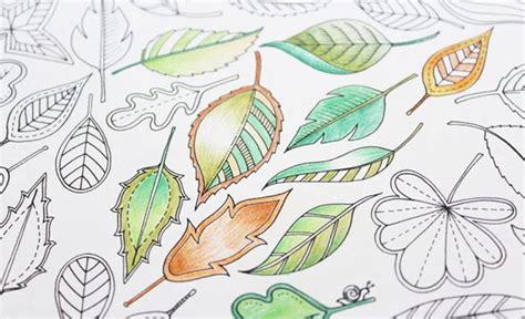 secret garden coloring book pens or pencils 17 best images about secret garden on secret