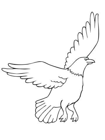 coloring pages american eagle american eagle coloring page free printable coloring pages